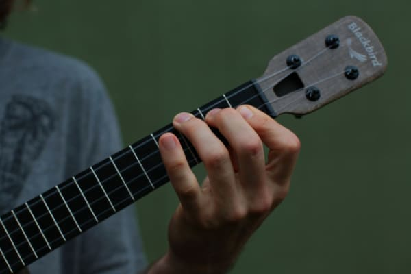 how to hold an ukulele with the fretting hand