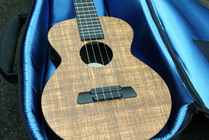 farallon ukulele in case