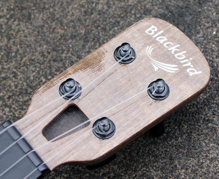 blackbird farallon headstock
