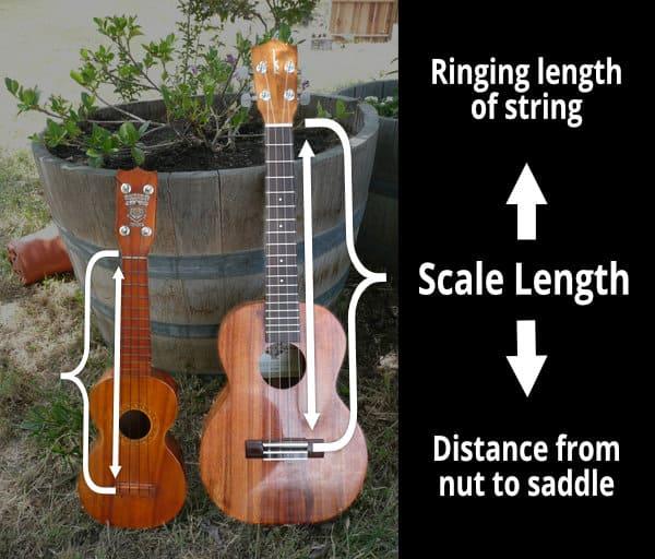 ukulele scale length infographic