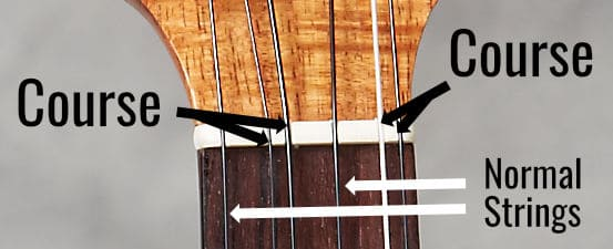 string courses ukulele
