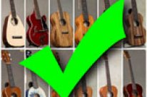The Big, Huge 'Ukulele Buying Guide