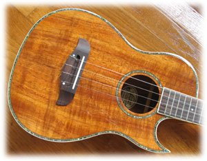 Oscar Schmidt Ou55ce on oscar schmidt ukulele review