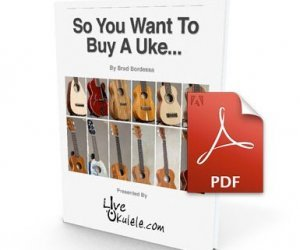so you want to buy a uke book cover
