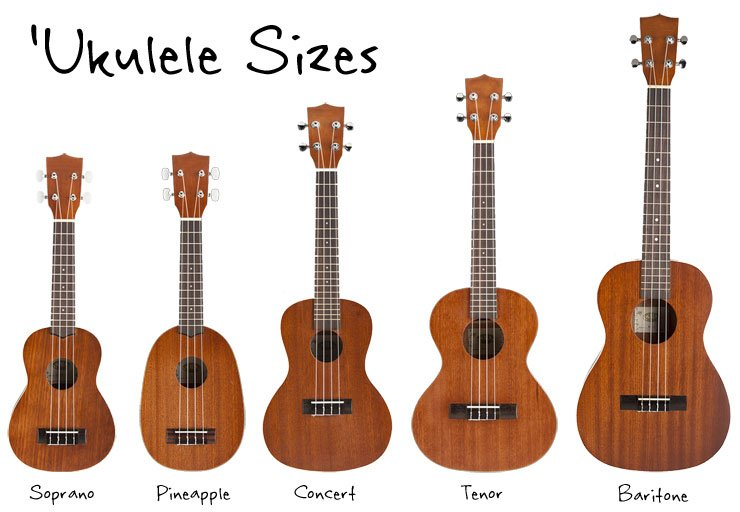 Ukulele Sizes: Soprano, Concert, Tenor, and Baritone